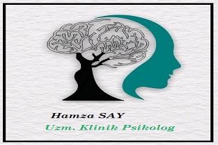 Van Psikolog Hamza Say
