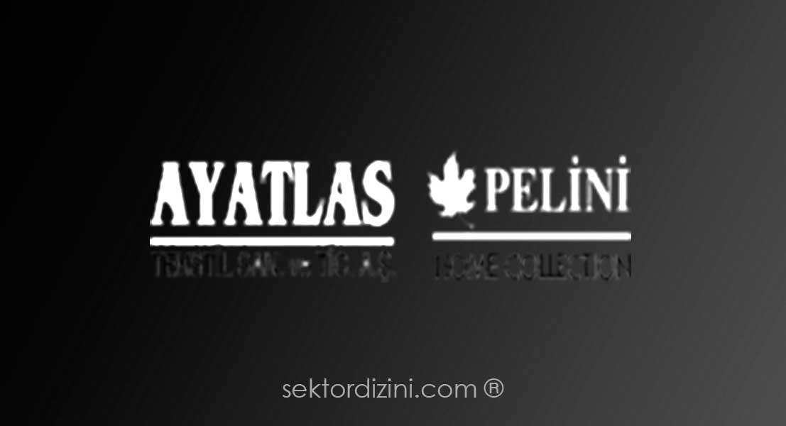 Pellini Koll. Ltd.şti.