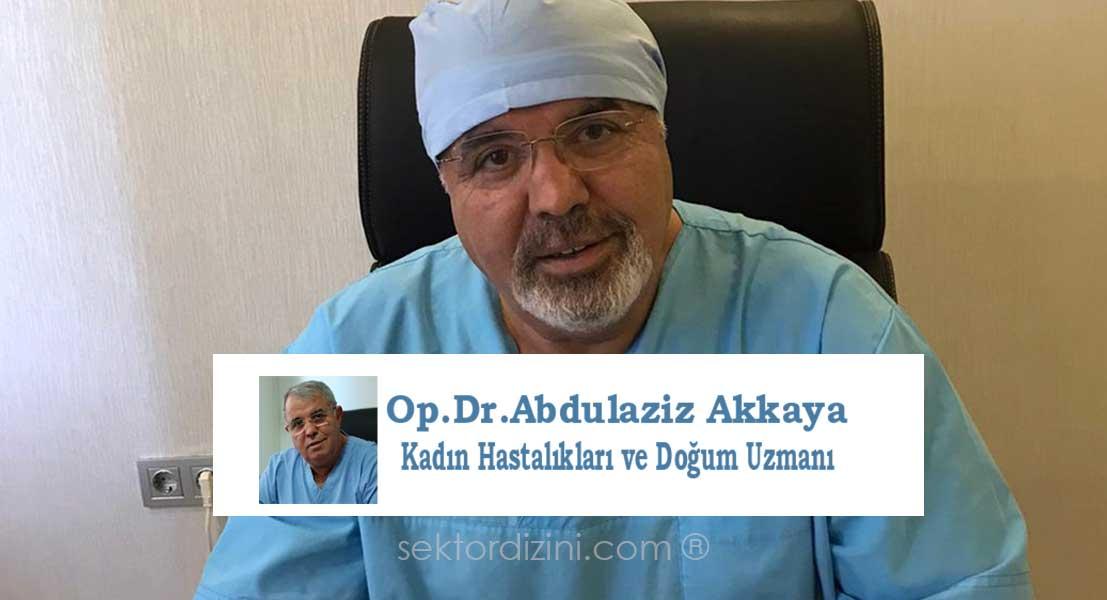 Antalya Akkaya Jinekoloji Kliniği - Abdulaziz Karakaya